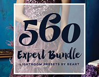 560 Premium Photoshop Actions Bundle by BeArt Presets
