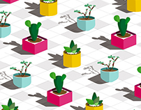 Pattern - Succulents Plants