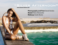 """ Silver Afternoon"""