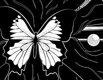 Madame Butterfly - Black and White Poster