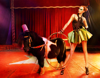 Circus story