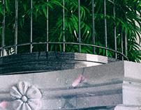 Plant Cage