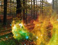 Nebula + Forest