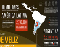 Infographic Poster on Chagas Disease