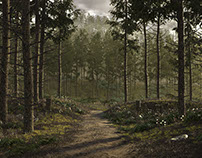 """""""pine forest"""""""