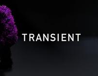 Transient (WIP)