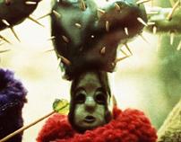 Cactus Dolls