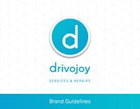 Drivojoy Brand Guidelines