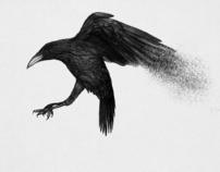 David Zincke - Soul and Bones