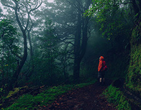 Madeira - selected photos