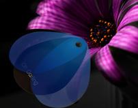 Butterfly Dvd Art