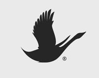 Blackswan - Branding.