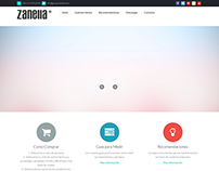 Website Grupo Zanella