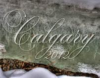 Calgary Winter 2012
