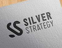 Silver Strategy Company Branding