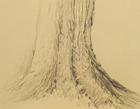 Textured Tree Trunk pencil drawing