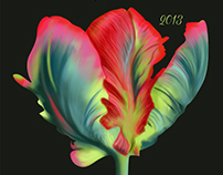 Tulips Wine Label