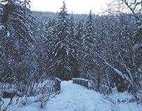 Alaskan Wonderland