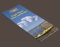 Aqua Excursions - Tri-Fold Brochure and Poster