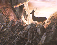 Deer in the cave
