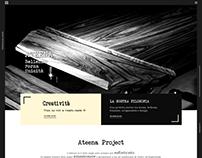 Web Design-Development // Ateena Project