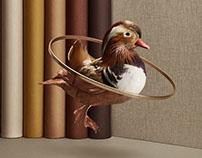 Birduals