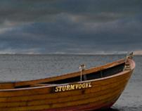 SturmVogel
