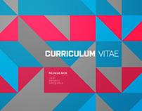 Curriculum Vitae / 2012