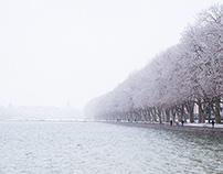 MISC // White day