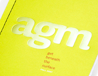 Anna Goodson Management Spring 2007 brochure