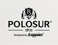 Propuesta creativa/redes sociales-PoloSur