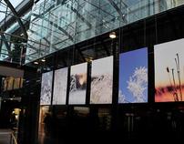 Exhibit, Gothenburg