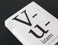 Vuizam