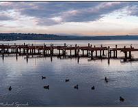 An early morning walk around Lake Washington