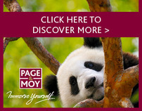 Page & Moy Wildlife & Culture animated banners
