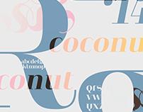 Typography Posters: Heimat Didone, Vitesse Sans
