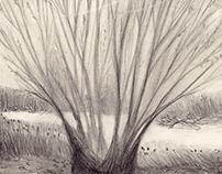 The loss - P. Kahlo - Pencil