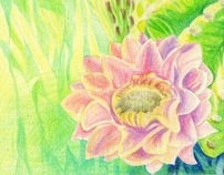 Cactus colored pencil drawing by April Galamin