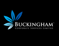 Buckingham (Corporate Financial Services) - Logo Design
