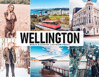 Free Wellington Mobile & Desktop Lightroom Preset