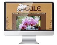 """Flowershop """"Eule"""" Website"""