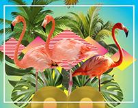 Paradise Bangkok poster