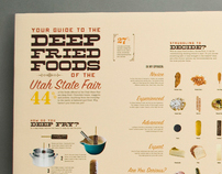 State Fair Infographic