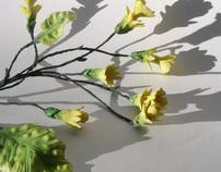 Fondant and Gum Paste Flowers