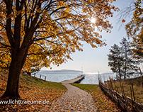 Malexander im Herbst