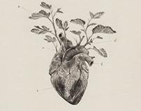 Dibujos 10/ Drawings 10
