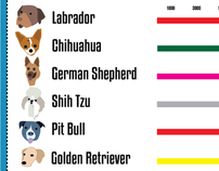 dogster infographic