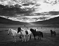 Black & White Iceland