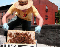Urban Beekeeping: NYC