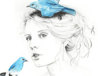 Where do my bluebirds fly